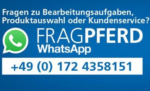 WhatsApp: Heißer Draht zum PFERD-Experten
